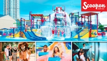 GOLD COAST 3-Night Family Fun Stay at Paradise Resort! Ultd Entry to Dreamworld, WhiteWater World & SkyPoint Observation Deck! 2 Adults & 2 Kids u/12