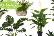 Breathe New Life into Your Home w/ the Faux Indoor Plant, Planters & Vases Sale! Diversify Decor Textures, Shapes & Colours w/ a Green Addition