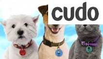 Treat Your Furry Friend to Personalised Pet Tags from Personalised Gifts Market! Ft. Durable Aluminium w/ Collar-Friendly Design in Range of Colours