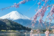 JAPAN W/ FLIGHTS Fly Out of AU & See Japan in All Its Glory w/ an 8 Day Tour! Visit Tokyo, Kyoto & Osaka Incl. Some Meals, Transfers & More