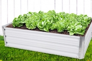 Grow Your Green Thumb with a Raised Garden Bed! Lightweight & Perfect for Growing Plants & Veggies in the Backyard. Two Sizes. Plus P&H