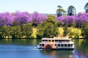 Board the Beautiful Old-World Nepean Belle Paddlewheeler for a 1.5 Hr Devonshire Tea! Upgrade for 2.5-Hr Lunch or 3-Hr Dinner Cruise