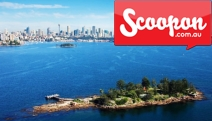 Set Sail for an Exciting 3-Hr Harbour Discovery Cruise to Shark Island by Sydney Princess Cruises! Choice of Morning Tea or BBQ Lunch Buffet & More