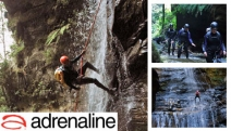 Get a Shot of Adrenaline Rush w/ a Half Day Canyoning in Empress Falls or Grand Canyon, Blue Mountains! Ft. Abseil Training, Equipment, Guides & More