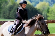 Giddy Up for a 45-Min Horse Riding Lesson at Indarra Equestrian. Upgrade for a Hands-On Horse Experience - Learn to Groom, Saddle Up & 60-Min Ride!