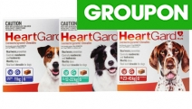 Keep Your Furry Bestie Safe from Heartworm Infections w/ 6-Pack HeartGard Plus Worm Protection Chews! Available for Medium or Large Dogs