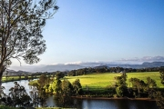 Experience the Outdoors Like Never Before w/ a 2-Hour Rainforest Lunch Cruise Incl. a Seafood Platter, Glass of Wine & More w/ Mount Warning Tours