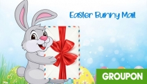 Give Your Kids a Treat w/ a Personalised Letter from the Easter Bunny! Digital Letter is Addressed to Your Child & Emailed to You to Print Out at Home