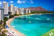 WAIKIKI, HONOLULU w/ FLIGHTS Escape w/ 7-Night Stay at Pearl Hotel Waikiki! Surf or Swim in the Turquoise Pacific, Short Stroll from Waikiki Beach