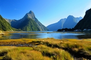 SYD TO NZ CRUISE See Milford Sound Fjord, Bay of Islands, Wellington, Auckland & More. 12 Nights Incl. Main Meals, Flight Back to Sydney & More
