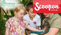 Make Some Furry, Feathery & Scaly New Mates w/ this All Day Entry Pass to Featherdale Wildlife Park! Home to AU's Most Beloved & Iconic Animals