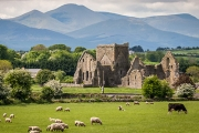 IRELAND 8-Day Tour of Dublin, Galway, Ring of Kerry, Cliffs of Moher, Blarney Castle & More. Incl. Top Hotel Stays, Select Meals, Sightseeing & More