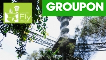 Take on an Exciting Treetop Adventure at Illawarra Fly! Climb Knights Tower, Treetop Canopy Walk 30 Metres Above Ground, Bushwalking Trails & More
