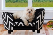 Treat Your Furry Friend to a Throne of their Own w/ these Luxury Pet Beds! Miniature Arm Chair Design w/ Removable Cushion Cover for Easy Cleaning