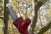 Save Time & Energy Tidying Up the Yard with a Cordless Tree Lopper! Incl. Rechargeable Battery & Can Cut Branches Up To 15cm Thick