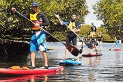 Explore Adelaide Dolphin Sanctuary with a Two-Hour Stand-Up Paddleboarding Guided Tour! Ideal for First-timers and Experienced Paddlers Alike