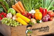 Enjoy Fresh, Seasonal Produce w/ a Box of Fresh Fruit & Veggies Delivered to Your Door from HomeFresh Organics! Choice of Conventional or Organic Box