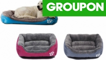 Keep Your Furry Friend Warm & Comfy in the Winter w/ a Plush Pet Lounge Bed! Fashionable Design w/ High-Quality Fabric in Range of Sizes & Colours