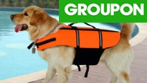 Keep Your Four-Legged Bestie Safe on the Water w/ a Dog Life Jacket from $14! Lightweight & Ergonomical Design for Comfort in a Choice of Four Sizes