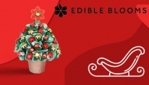 Celebrate the Festive Season with a Delicious Gift for Friends & Family w/ Edible Blooms Chocolate Bouquets. Mixed Lindt Choc, Christmas Star & More!