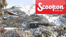 MT BULLER Ultimate Snowy Getaway w/ Up to 5N for Groups or Families @ Alpine Retreat Mt Buller! Aussie's Premier Winter Wonderland. Ski Hire & More