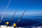 Cast Off on a 6-Hour Deep Sea Fishing Trip w/ the Crew from Sydney Sea Charters! Incl. Premium Baits, Fishing Gear & More. Departs Rose Bay Wharf