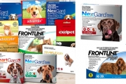 Protect Your Pets, Family & Home from Fleas + Ticks w/ Leading Pet Care Brands! Shop Products Incl. NexGard Flea & Tick Control Chews & More