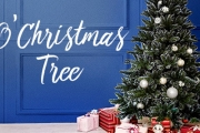 13 Weeks 'til Christmas! Get Organised Early this Year with the Christmas Tree & Fairy Light Sale! Shop String Lights, Optic Fiber Trees & More