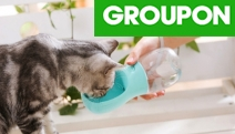 Keep Your Furry Friend Hydrated & Content While on the Go w/ these Super Handy Portable Pet Water Bottles! Ft. 350ml Capacity. Available in 3 Colours